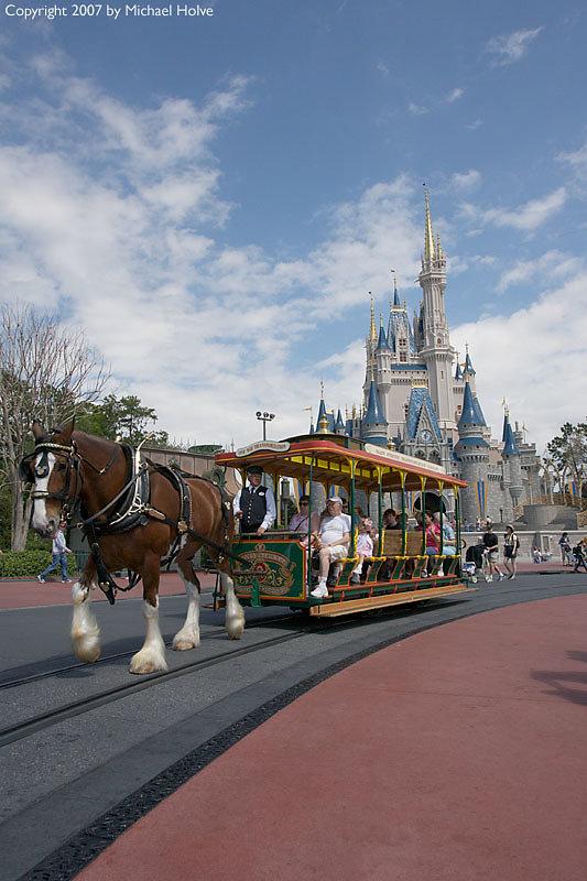 Magic Kingdom 2007