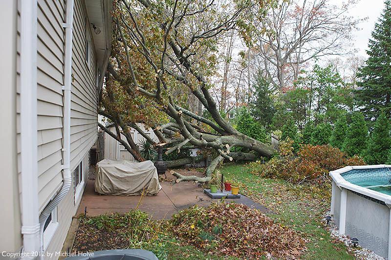 Hurricane Sandy Carnage